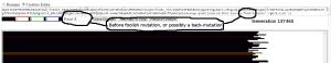 Muller's Foundry Screenshot - Before Foolish Mutation