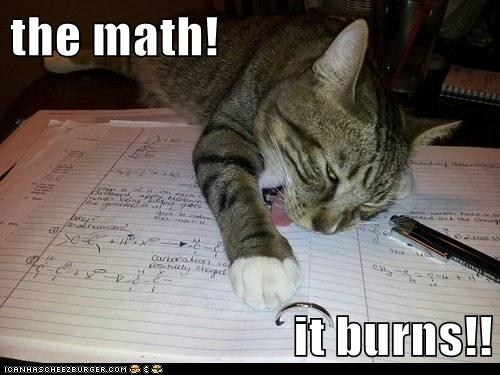 lolcat: The math...IT BURNS!!
